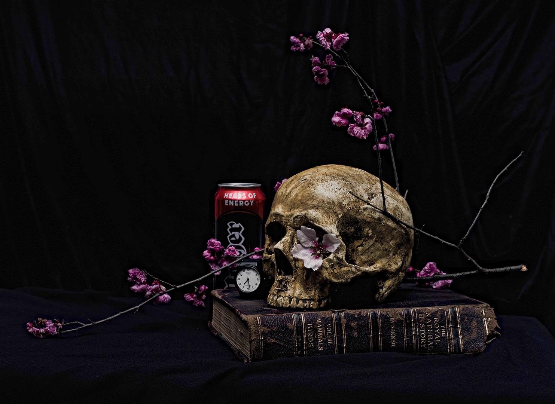 Paul Sloan, Still Life 5