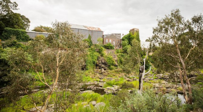 Buckley Falls, Geelong