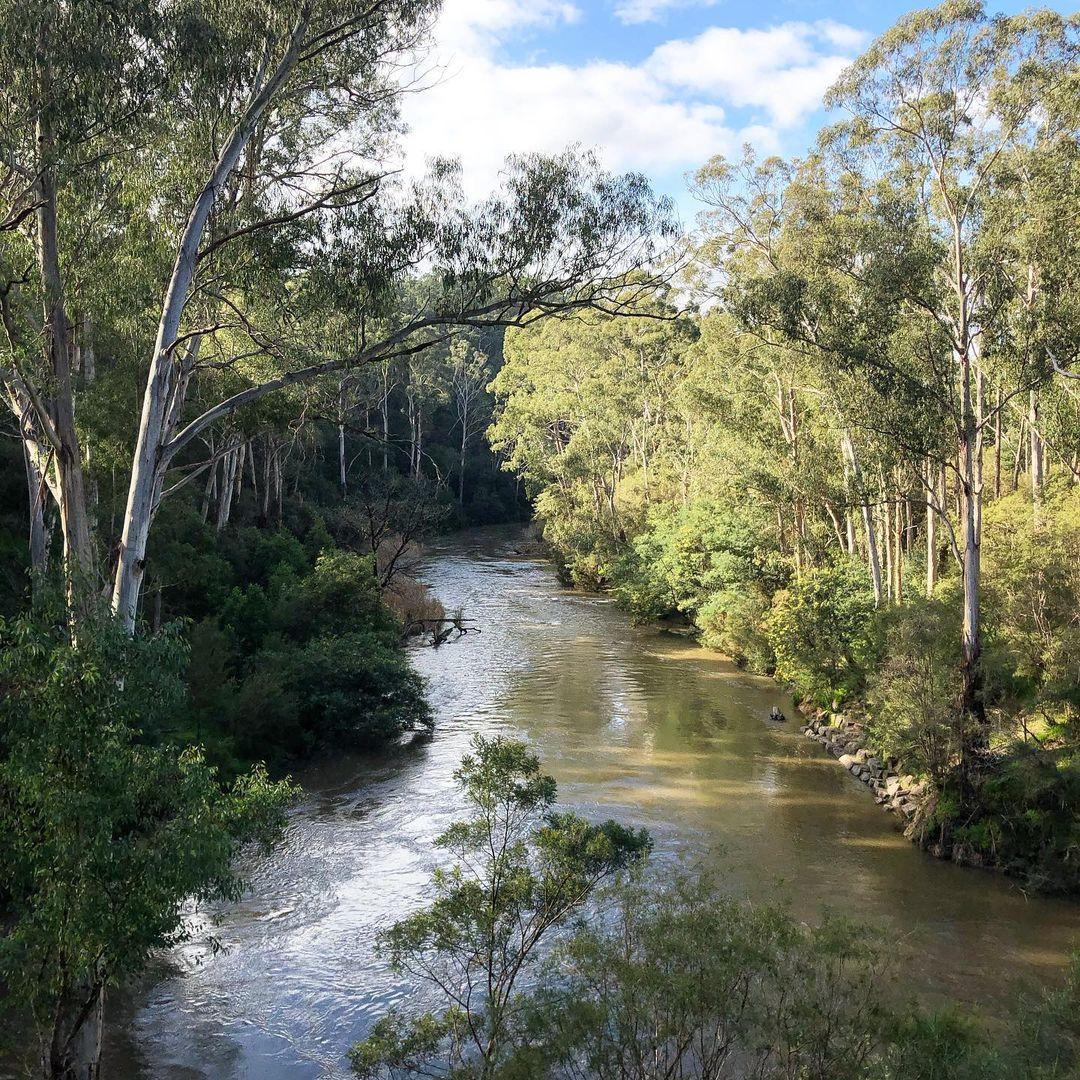 Pound Bend Warrandyte State Park Melbourne