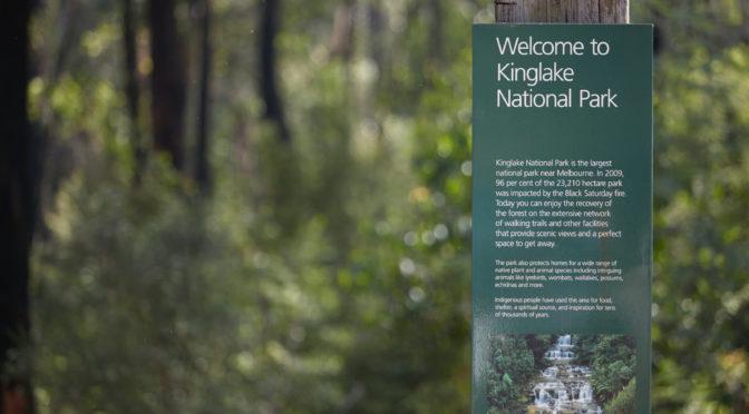 Kinglake National Park Melbourne