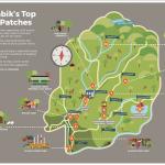 Nillumbik Picnic Locations