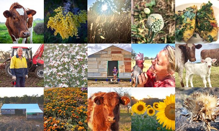 Eden Farm Multicultural Festival Numurkah